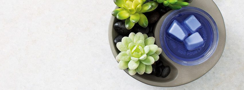 Diy Little Garden Scentsy Warmer Scentsy Buy Online Scentsy Warmers And Scents