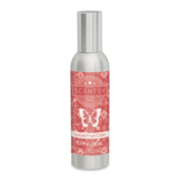SPICED FRUIT CIDER SCENTSY ROOM SPRAY