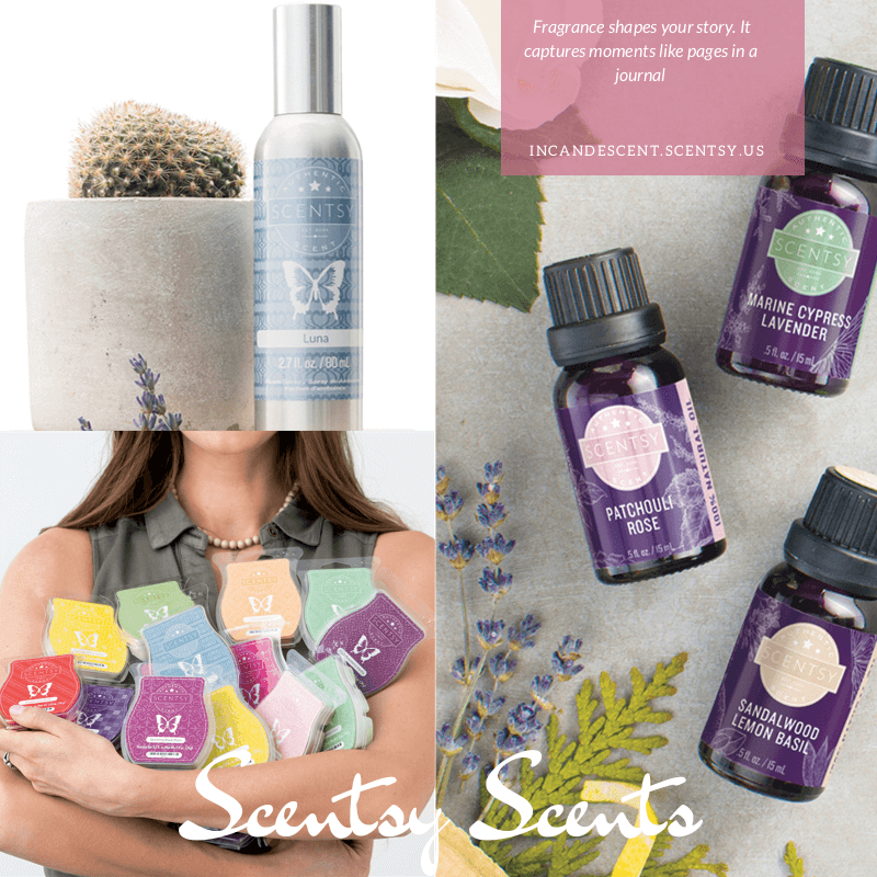 <h2> Scentsy Scentsy </h2>
