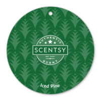 ICED PINE SCENTSY SCENT CIRCLE