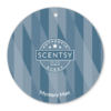 MYSTERY MAN SCENTSY SCENT CIRCLE | MYSTERY MAN SCENTSY SCENT CIRCLE | Shop Scentsy | Incandescent.Scentsy.us