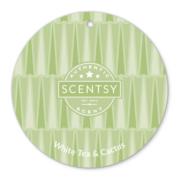 WHITE TEA & CACTUS SCENTSY SCENT CIRCLE