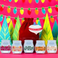NEW! SCENTSY SCENTS OF THE SEASON 2017 GIFT SACK