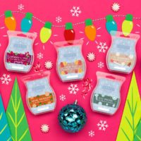 NEW! SCENTSY SCENTS OF THE SEASON 2017 MULTI-PACK