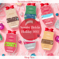 Scentsy Holiday Bricks 2017 Incandescent.scentsy.us | SCENTSY DECEMBER 2017 WARMER & SCENT OF THE MONTH - WILDLIFE LAMPSHADE SCENTSY WARMER & SCARLET WOODS