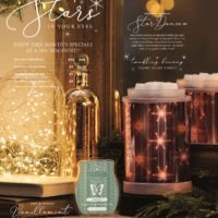 JANUARY 2018 SCENTSY WARMER AND SCENT OF THE MONTH (1) | SCENTSY FROST FOR A CAUSE