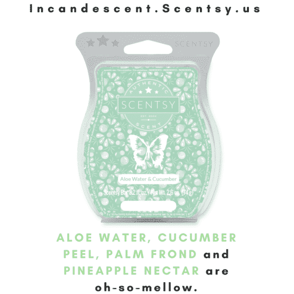 ALOE WATER & CUCUMBER SCENTSY INCANDESCENT.SCENTSY.US | Aloe Water & Cucumber Scentsy Bar