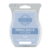 BEACH BRING BACK MY SCENTSY BAR 2018