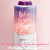 BELIEVE IN YOUR DREAMS NIGHTLIGHT MINI SCENTSY WARMER