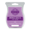 BOHO BRING BACK MY SCENTSY BAR 2018