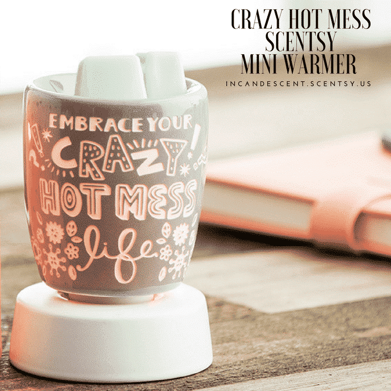 CRAZY HOT MESS SCENTSY MINI WARMER