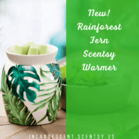 New Scentsy Spring Summer 2018 Catalog Info Scentsy 174 Buy