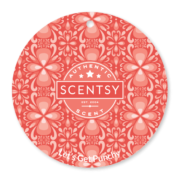 LET'S GET PUNCHY SCENTSY SCENT CIRCLE