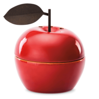 APPRECIATION APPLE SCENTSY WARMER