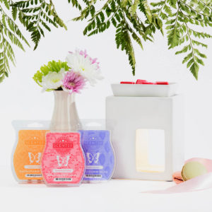 CONTEMPO SCENTSY WARMER BUNDLE | SCENTSY MOTHER'S DAY 2018 BUNDLES AND SPECIALS
