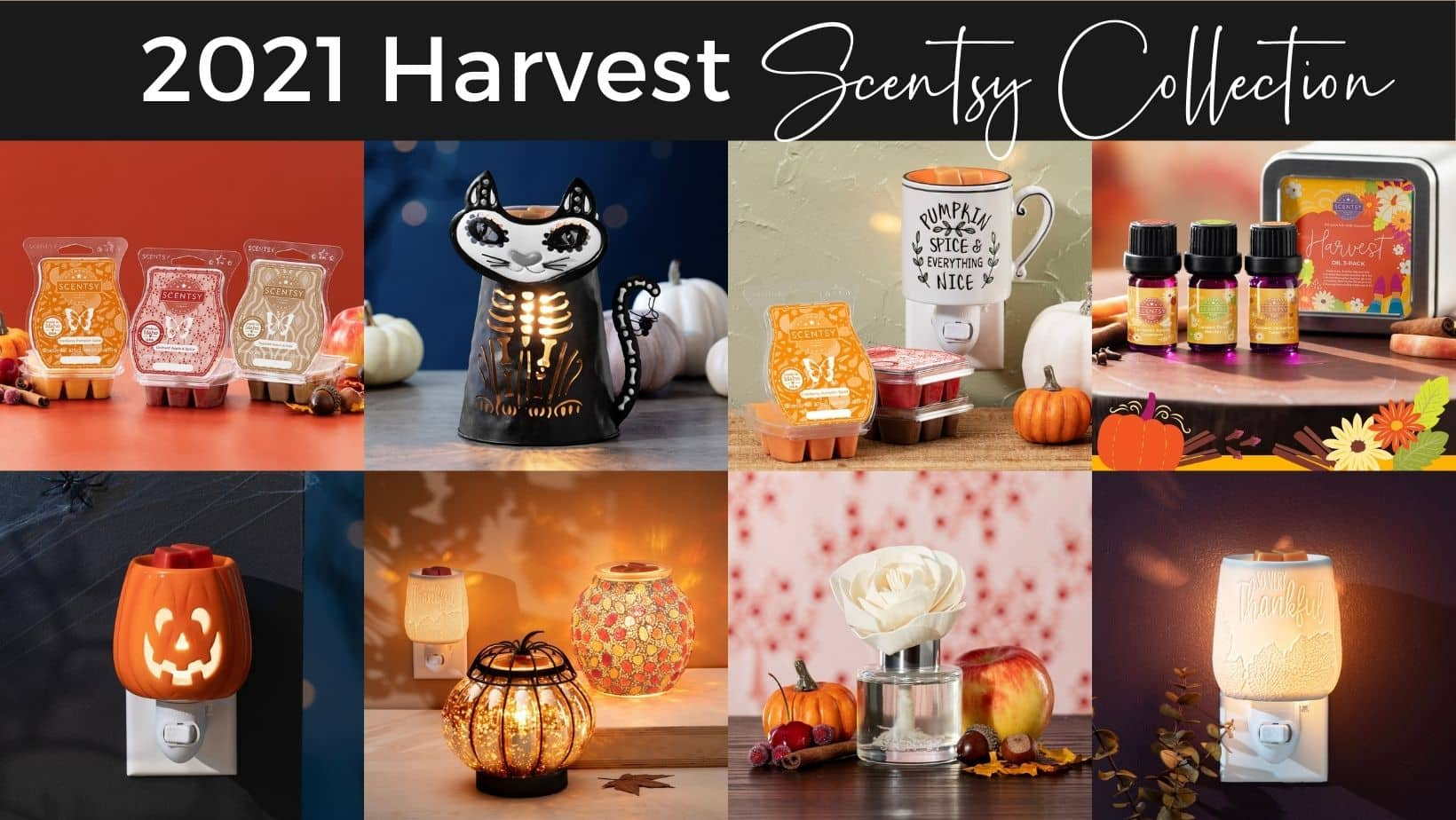 2021 Harvest Collection Shop Now 4