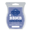 BLUEBERRY RUSH SCENTSY BAR