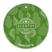 FIDDLE LEAF FIG SCENTSY SCENT CIRCLE