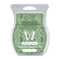 EVERGREEN & GRAPEFRUIT SCENTSY BAR
