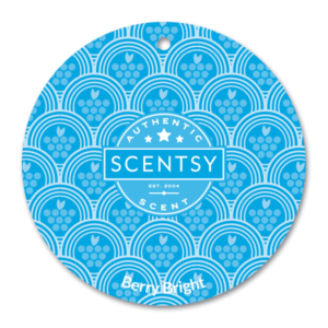 BERRY BRIGHT SCENTSY SCENT CIRCLE