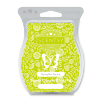 SPRING HAS SPRUNG SCENTSY BAR