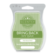 MAD ABOUT MINT SCENTSY BAR