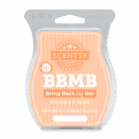 A WINK A SMILE SCENTSY BAR