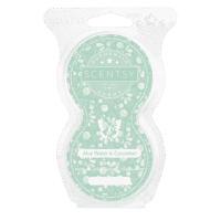 ALOE WATER & CUCUMBER SCENTSY GO PODS