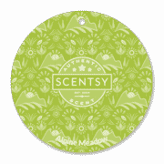 ALPINE MEADOW SCENTSY SCENT CIRCLE
