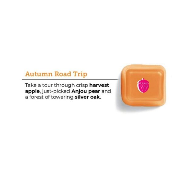 AUTUMN ROAD TRIP SCENTSY FRAGRANCE