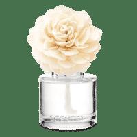 Apple Cinnamon Sticks Darling Dahlia Scentsy Fragrance Flower