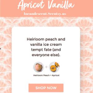 Apricot Vanilla Scentsy ScenTrend 2018 Incandescent.Scentsy.us | SCENTSY ScenTrend 2018 Heirloom Peach Fragrance