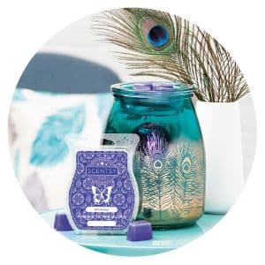 BE BOLD SCENTSY WARMER