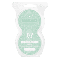 Bonfire Beach Scentsy Pods