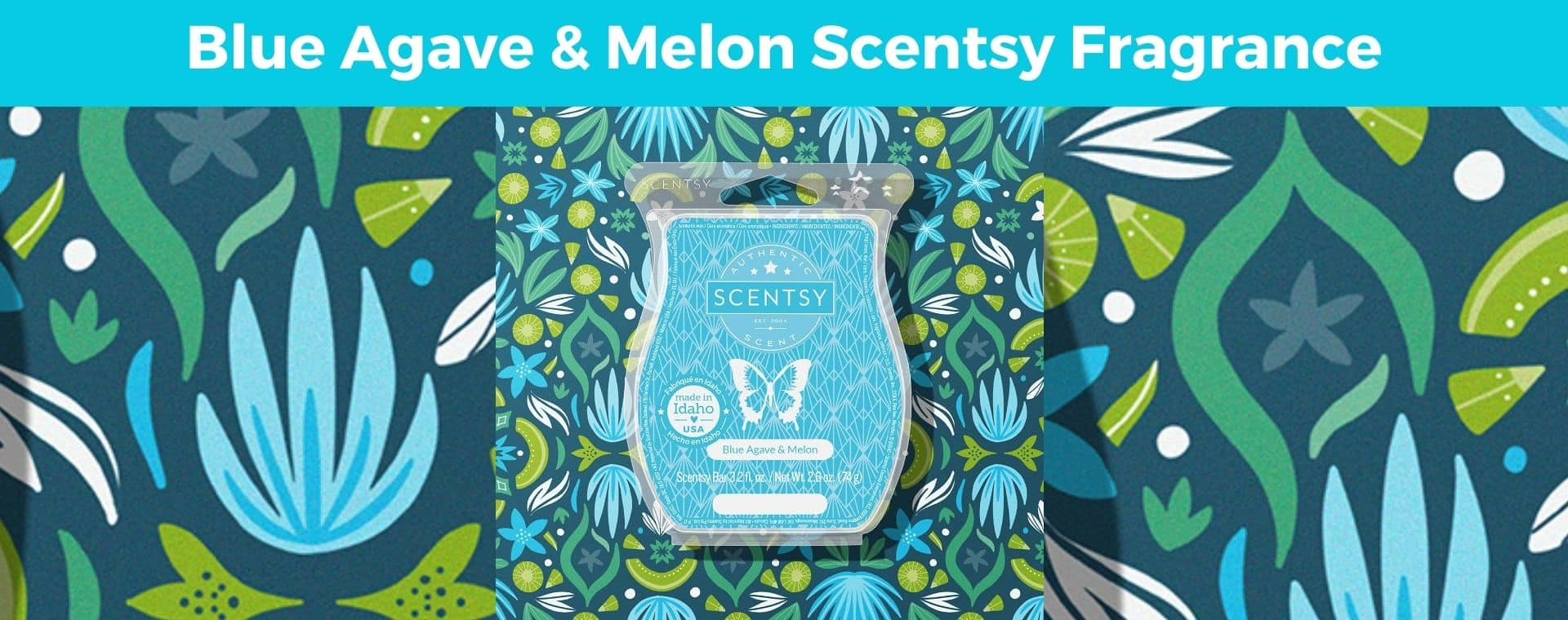 Blue Agave Melon Scentsy Fragrance