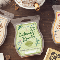 SCENTSY HYGGE WAX BAR FRAGRANCE COLLECTION