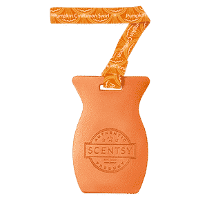 PUMPKIN CINNAMON SWIRL SCENTSY CAR BAR