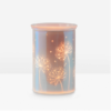 CAST PINK SCENTSY WARMER INSERT | Cast - Pink Scentsy Warmer with Spring Pack | February 2021