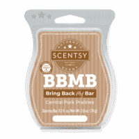 CENTRAL PARK PRALINE SCENTSY BAR