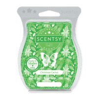 CHRISTMAS CACTUS SCENTSY BAR 1