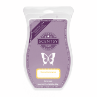 COCONUT LEMONGRASS SCENTSY BRICK