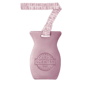 COZY CARDIGAN SCENTSY CAR BAR