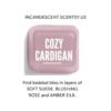 COZY CARDIGAN SCENTSY FRAGRANCE (1) | Cozy Cardigan Scentsy Scent Circle