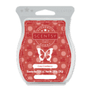 COZY CRANBERRY SCENTSY BAR