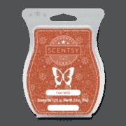 COZY SPICE SCENTSY BAR