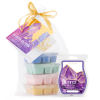 NEW! SCENTSY BAR CRYSTAL COLLECTION WITH GIFT BAG
