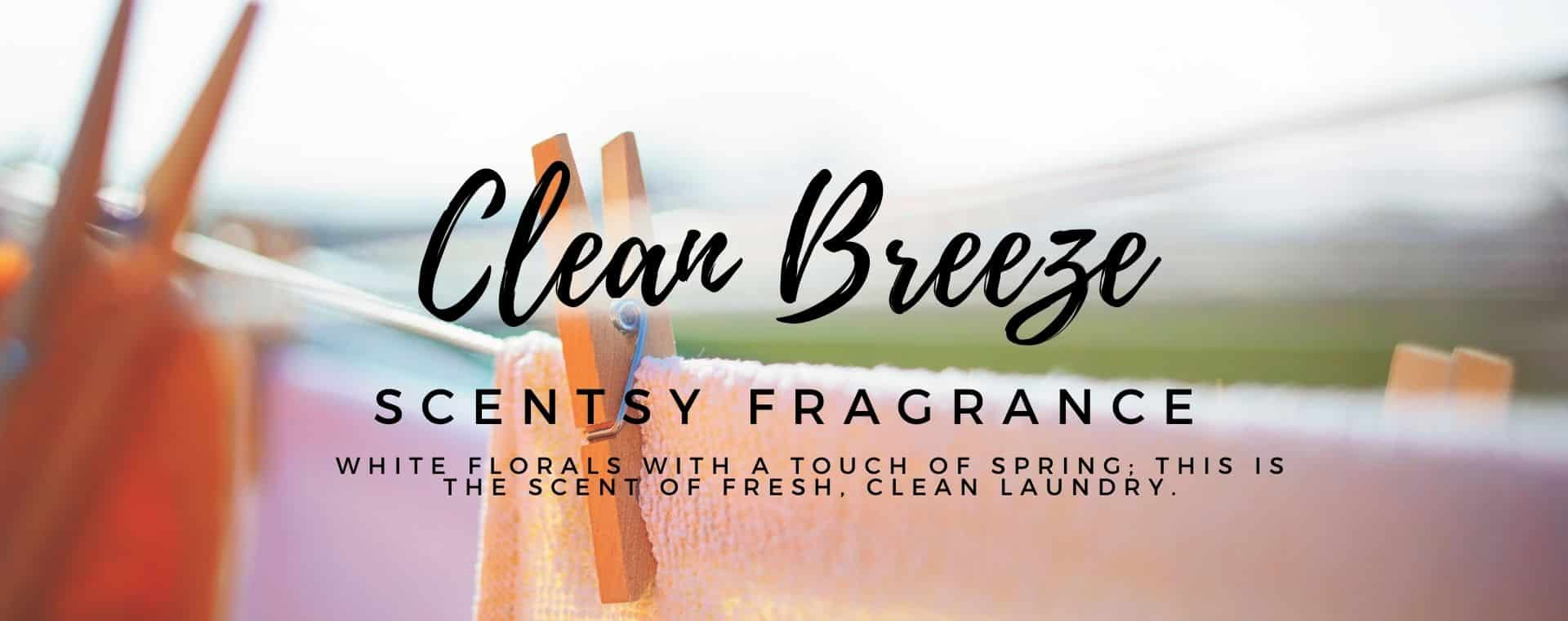 Clean Breeze Scentsy Fragrance