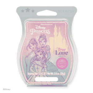 DISNEY TRUE LOVE AWAITS SCENTSY BAR | DISNEY PRINCESS COLLECTION