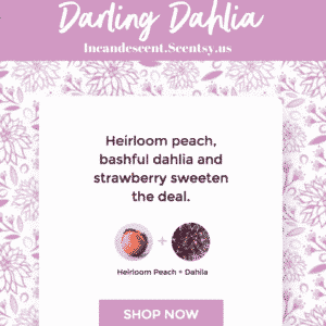 Darling Dahlia Scentsy ScenTrend 2018 Incandescent.Scentsy.us | SCENTSY ScenTrend 2018 Heirloom Peach Fragrance