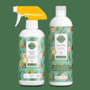 Evergreen Grapefruit Scentsy Clean Bundle